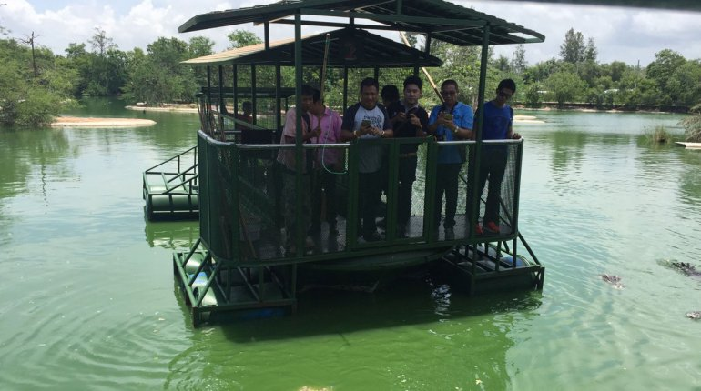 Tourists feeding crocs on a raft officials take an immediate interest pattaya news for Anajak thai cuisine