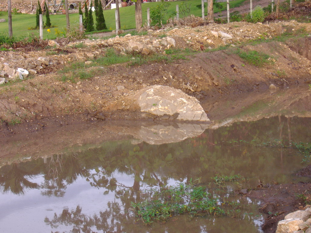 Clay to seal a fish pond farming in thailand forum for Clay fish pond