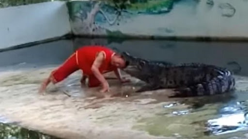 Crocodile Tries To Bite Man's Head Off. Watch What Happens Next