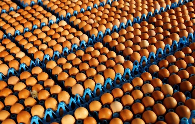 Supermarkets pull products from shelves in contaminated egg scare