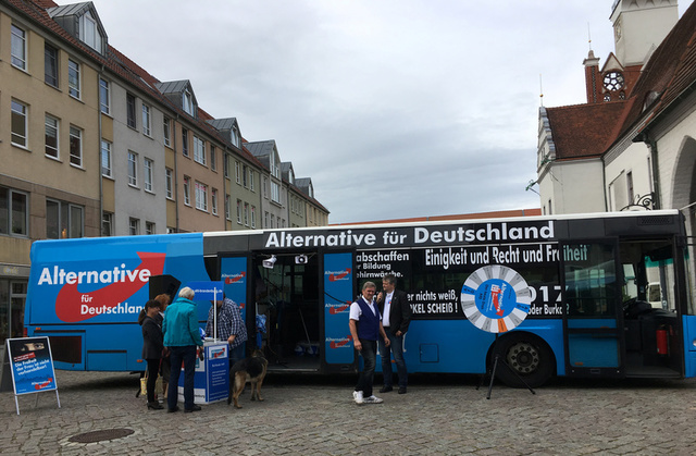 German far-right AfD MP quits party whip hours after being elected