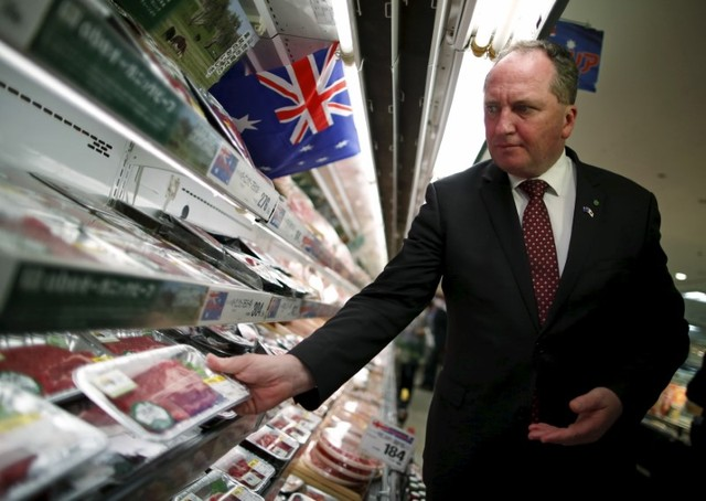 Barnaby Joyce wins New England by-election Anthony Green says