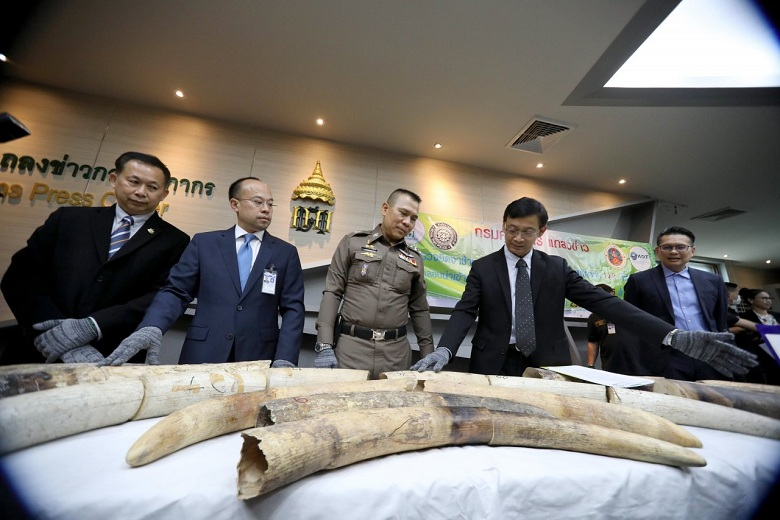 Thailand seizes £350000 haul of African elephant tusks
