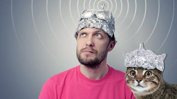tinfoil-hat-and-tinfoil-cat.jpg.7352c9709b21026987006ee7e19411e6.jpg