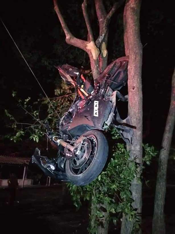 Woman survives crash that left bike up a tree - BangkokJack Com