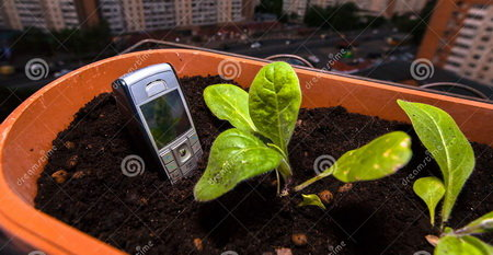 cell-phone-sticks-out-ground-flower-pot-balcony-old-mobile-150920726.jpg.9fc6dca8508117e7b7f7b8f3a35c445c.jpg