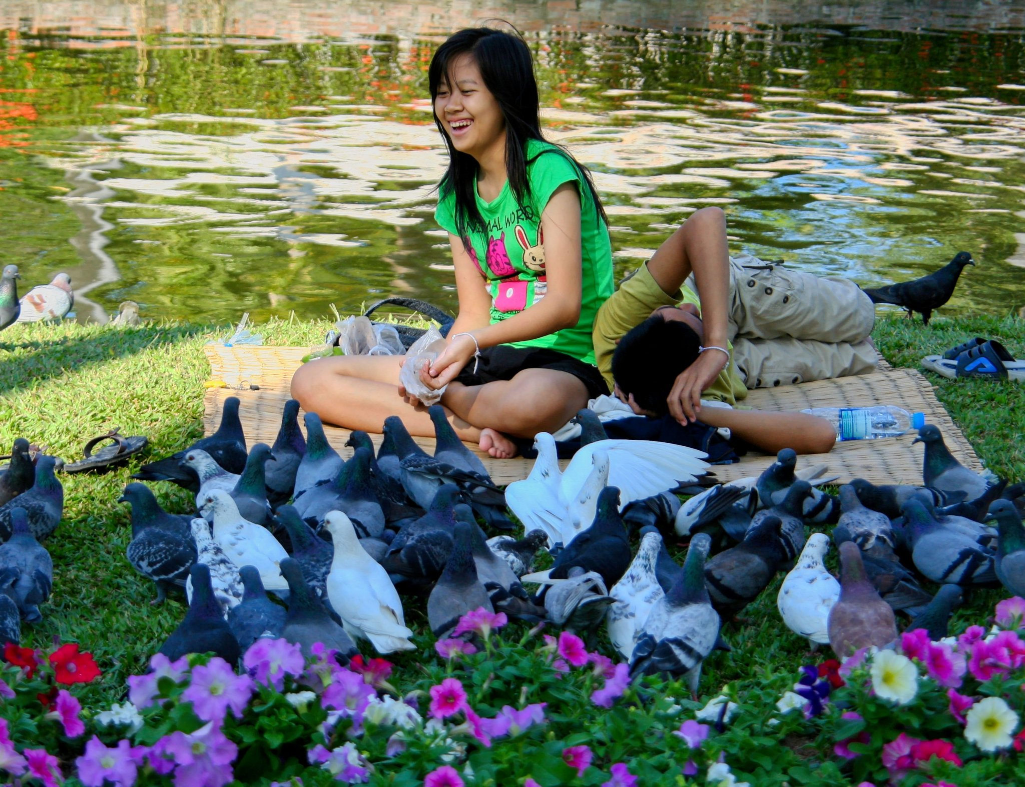 Feeding the Pigeons.jpg