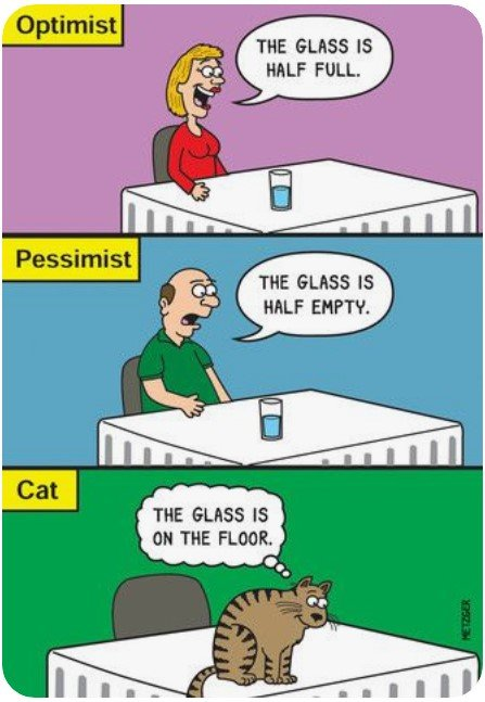Optimist2Cat.jpg.d7aafea2472e7bd674cb036375630c75.jpg